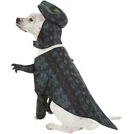 California Costumes Pupasaurus Rex Dog & Cat Costume, Large