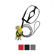 The Aviator Bird Harness & Leash, Black, XX-Small