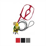 The Aviator Bird Harness & Leash, Red, Small