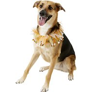 Rubie's Costume Company Candy Corn Dog & Cat Collar, Large/X-Large