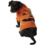 PetRageous Designs Jack O' Lantern Dog & Cat Hoodie, Small