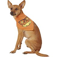Pup Crew Smiley Pumpkin Dog & Cat Bandana, X-Small/Small