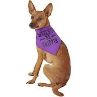 "SimplyWag ""Witches Be Trippin"" Dog & Cat Bandana, X-Small/Small"