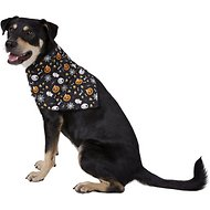 SimplyWag Skulls & Webs Dog & Cat Bandana, Medium/Large