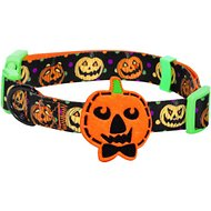 Blueberry Pet Halloween Harvest Pumpkin Dog Collar, Medium
