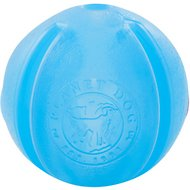 Planet Dog Orbee-Tuff GuRu Interactive Dog Toy