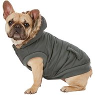 Frisco Dog & Cat Parka Coat, Black, Medium