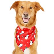 Frisco Dog & Cat Holiday Bandana