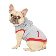 Frisco Dog & Cat Hoodie With Trim, Heather Gray/Red, Medium