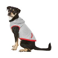 Frisco Dog & Cat Hoodie With Trim, Heather Gray/Red, Large