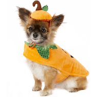 Frisco Pumpkin Dog & Cat Costume, X-Small