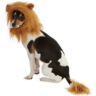 Frisco Lion Mane with Tail Dog & Cat Costume, Small/Medium