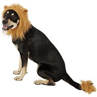 Frisco Lion Mane with Tail Dog & Cat Costume, Medium/Large