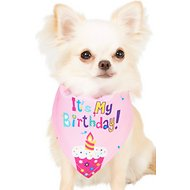 Frisco Dog & Cat The Birthday Girl Bandana, X-Small/Small