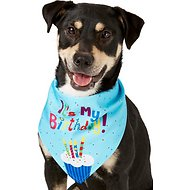 Frisco Dog & Cat The Birthday Boy Bandana, Medium/Large