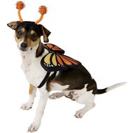 Frisco Monarch Butterfly Dog & Cat Costume, Small