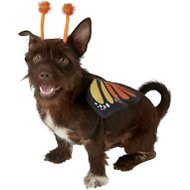 Frisco Monarch Butterfly Dog & Cat Costume, Medium