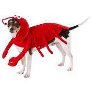 Frisco Lobster Dog & Cat Costume, Small