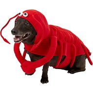 Frisco Lobster Dog & Cat Costume, Large