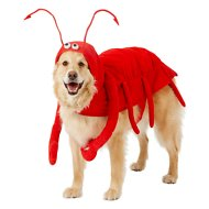 Frisco Lobster Dog & Cat Costume, XX-Large