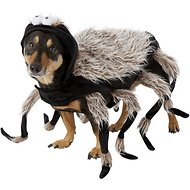 Frisco Tarantula Spider Dog & Cat Costume, Large