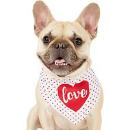 Frisco Dog & Cat Love Heart Bandana, X-Small/Small