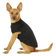 Frisco Basic Dog & Cat T-Shirt, Black, Small