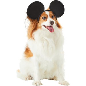 Mickey Mouse Ears Dog Costume