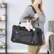 Frisco Travel Pet Carrier, Black, Medium