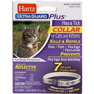 Hartz UltraGuard Plus Flea & Tick Collar with Reflect-X Shield for Cats, 1 count