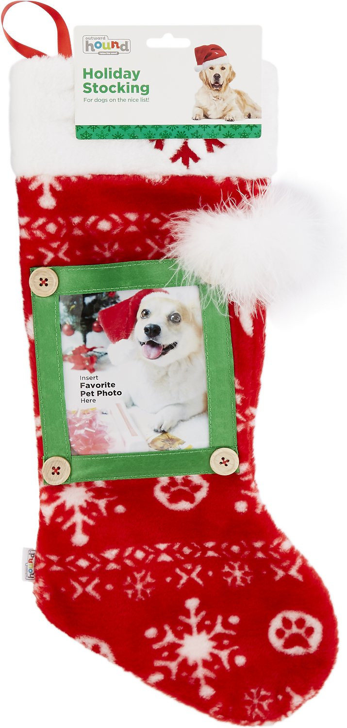 Outward Hound Holiday Picture Stocking Chewycom