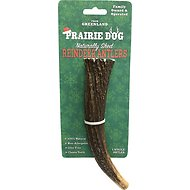Prairie Dog Large Whole Reindeer Antler Dog Chew