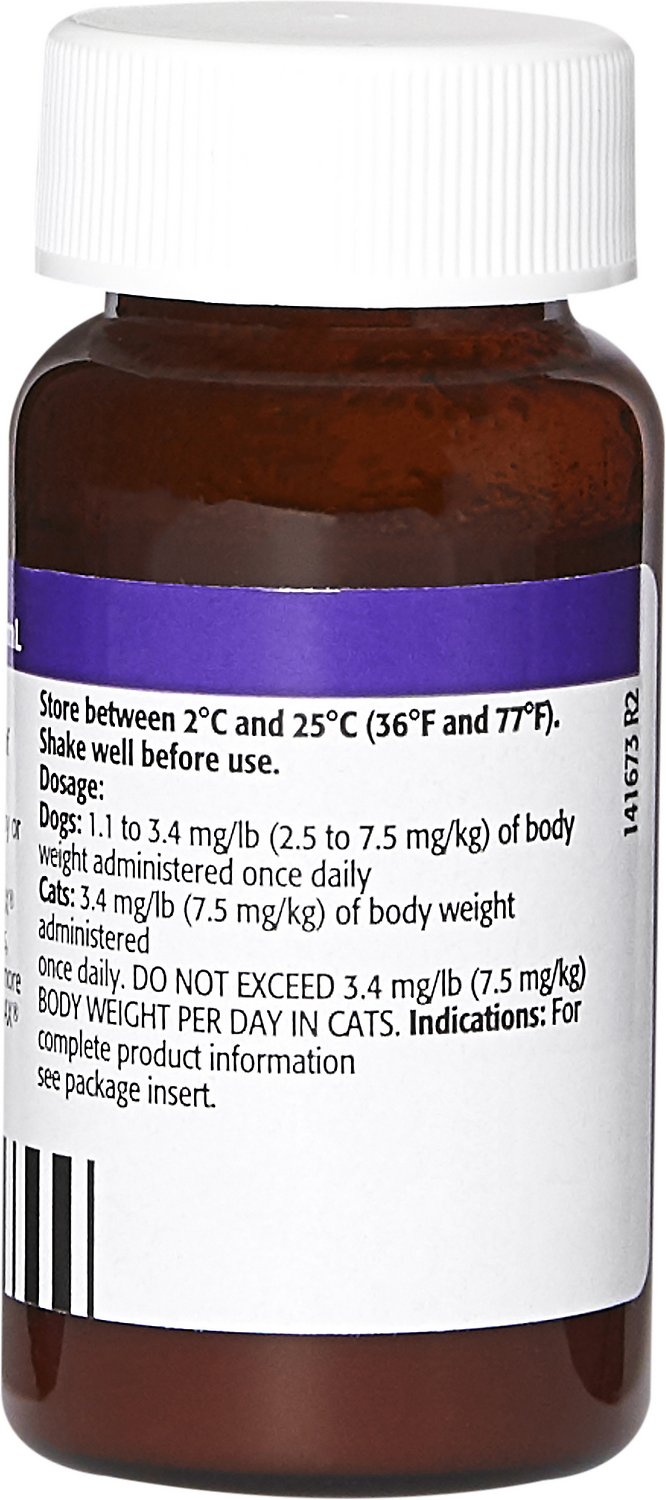 Orbax Oral Suspension For Dogs Cats 30 Mgml 20 Ml Chewy