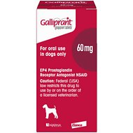 Galliprant Tablets for Dogs, 60-mg, 1 tablet