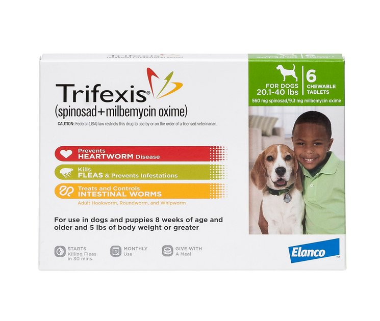 Dog On Trifexis Still Has Fleas