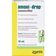 Amoxi-Drop (Amoxicillin) Oral Suspension for Dogs & Cats, 50-mg, 15-mL
