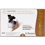 Revolution Topical Solution for Dogs, 10.1-20 lbs, 6 treatments