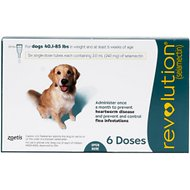 Revolution Topical Solution for Dogs, 40.1-85 lbs, 6 treatments