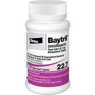 Baytril (Enrofloxacin) Chewable Tablets for Dogs & Cats, 22.7-mg, 1 tablet