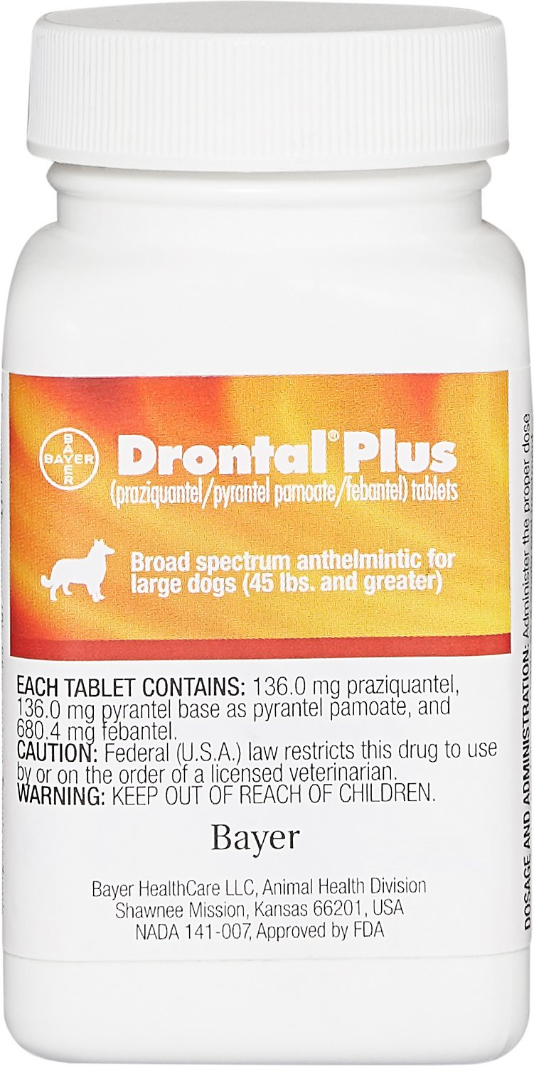 Drontal Plus Tablets For Dogs Over 45 Lbs 1 Tablet Chewy Com