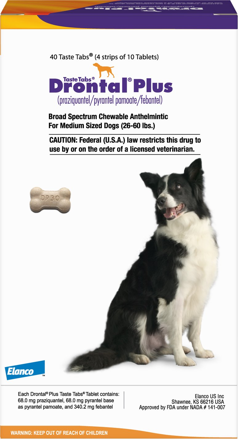 Drontal Plus Chewable Tablets for Dogs, 26-60 lbs, 1 tablet