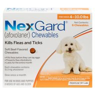 NexGard Chewables for Dogs, 4-10 lbs, 6 treatments (Orange Box)