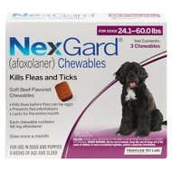 NexGard Chewable Tablets for Dogs, 24.1-60 lbs, 3 treatments (Purple Box)