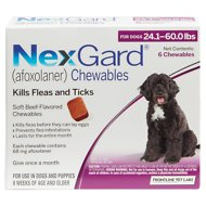 NexGard Chewable Tablets for Dogs, 24.1-60 lbs, 6 treatments (Purple Box)