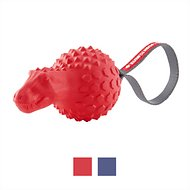 Frisco Push to Mute Fetch Squeaking T-Rex Dog Toy, Red