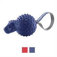 Frisco Push to Mute Squeaking T-Rex Dog Toy, Blue