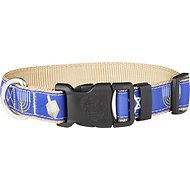 Country Brook Design Deluxe Hanukkah Dog Collar, Medium