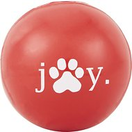 Planet Dog Orbee-Tuff Joy Ball Dog Toy, 4-in
