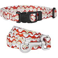 Country Brook Design Where's Merry Deluxe Dog Collar & Leash, Small