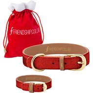 FriendshipCollar Partying Pooch Dog Collar with Friendship Bracelet, Large